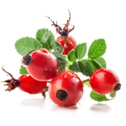 21NH_ingredients_rosehips