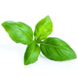 21NH_ingredients_basil